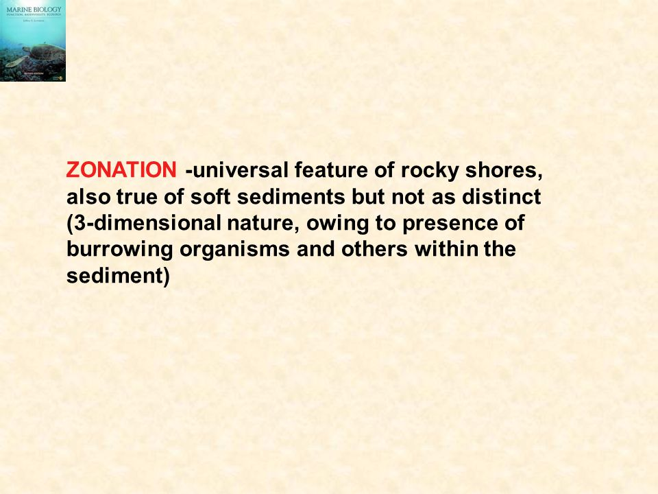 ZONATION -universal feature of rocky shores,