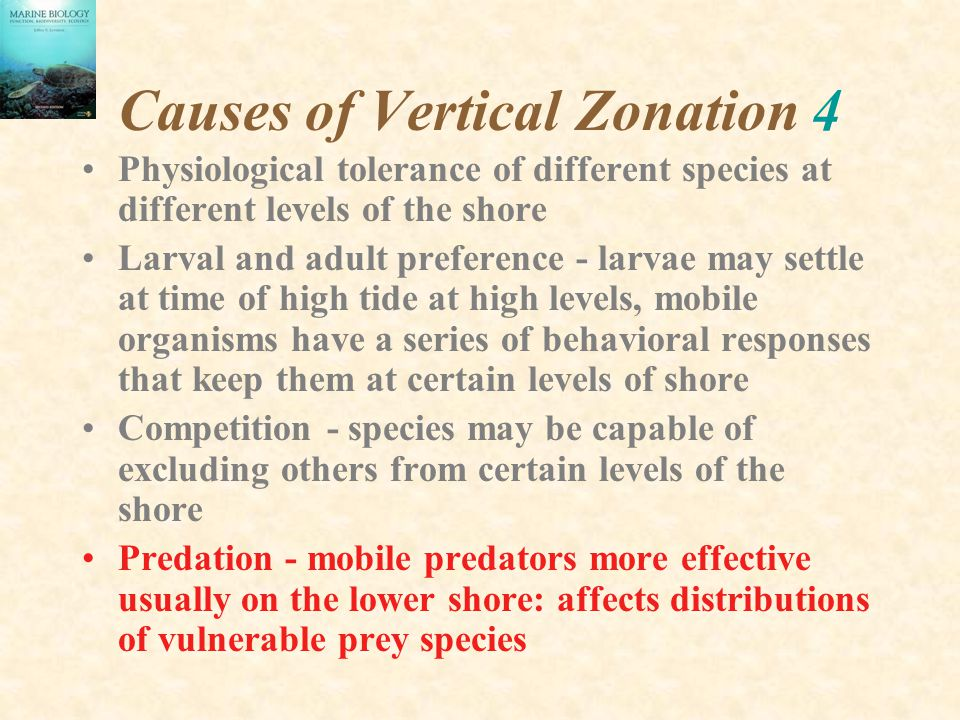 Causes of Vertical Zonation 4