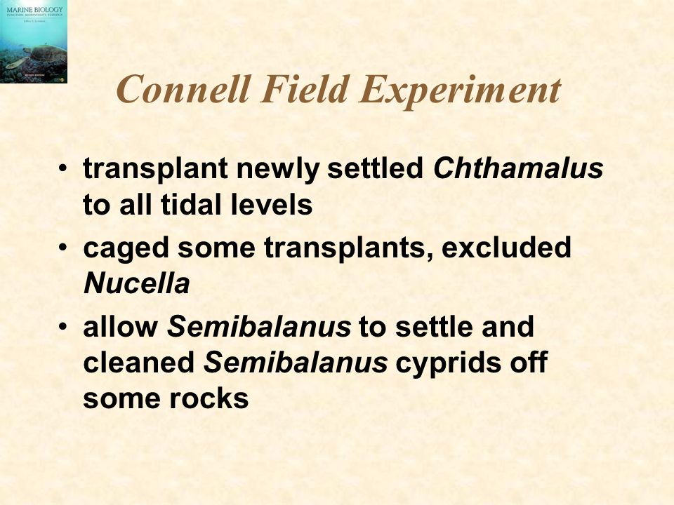 Connell Field Experiment