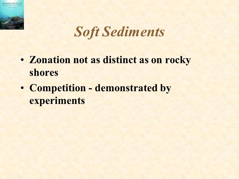 Soft Sediments Zonation not as distinct as on rocky shores