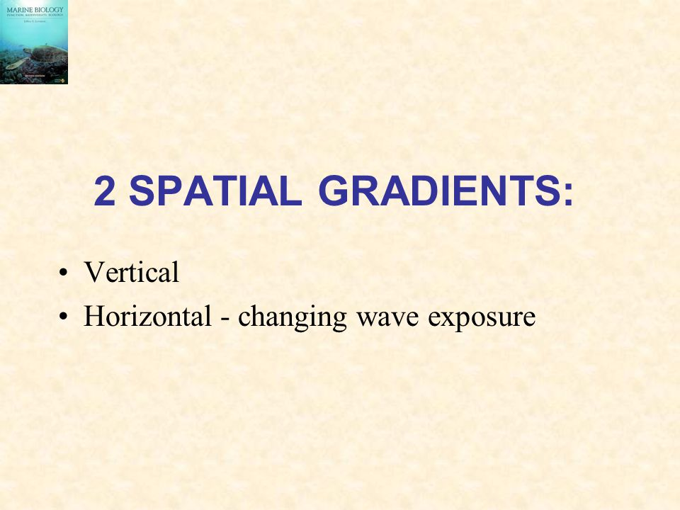 2 SPATIAL GRADIENTS: Vertical Horizontal - changing wave exposure