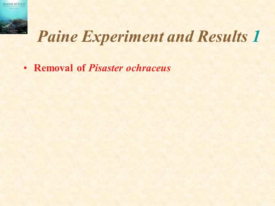 Paine Experiment and Results 1
