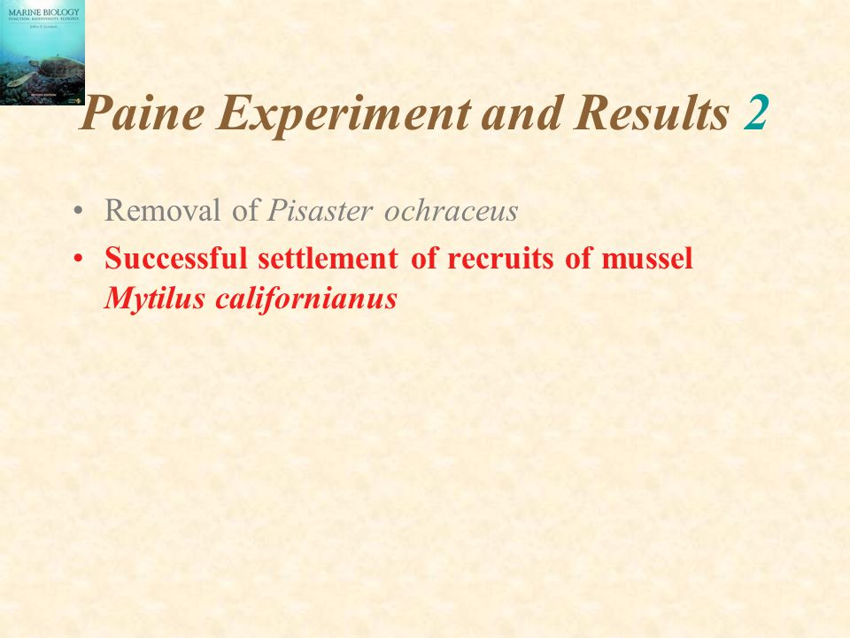 Paine Experiment and Results 2