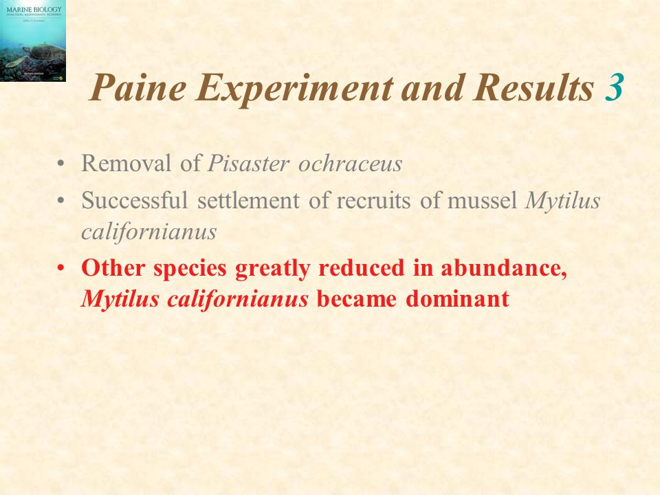 Paine Experiment and Results 3