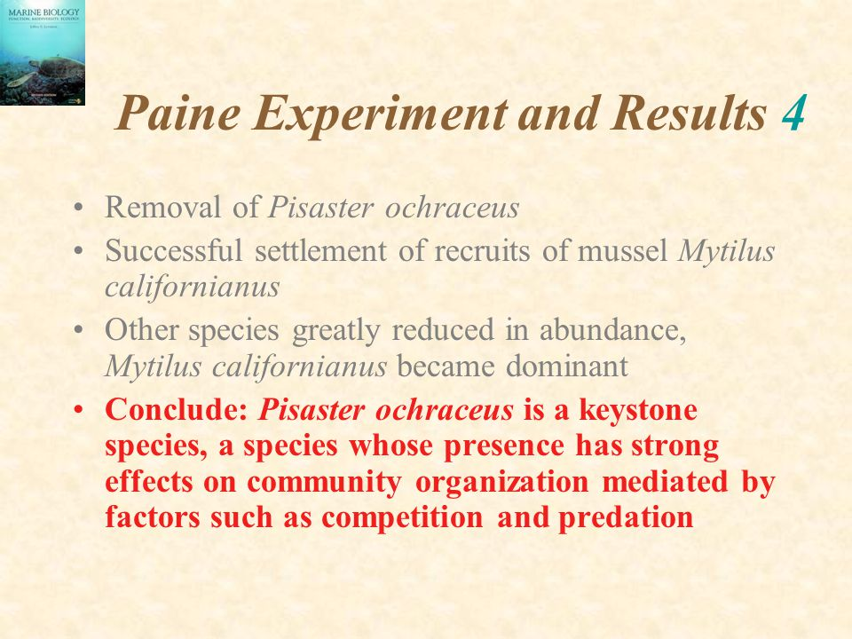 Paine Experiment and Results 4