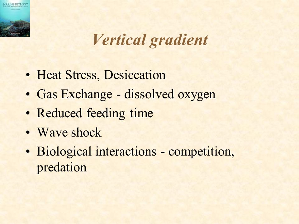 Vertical gradient Heat Stress, Desiccation
