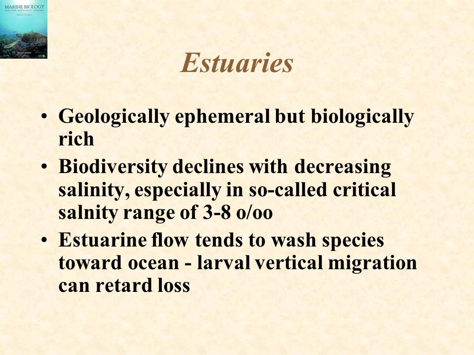 Estuaries Geologically ephemeral but biologically rich