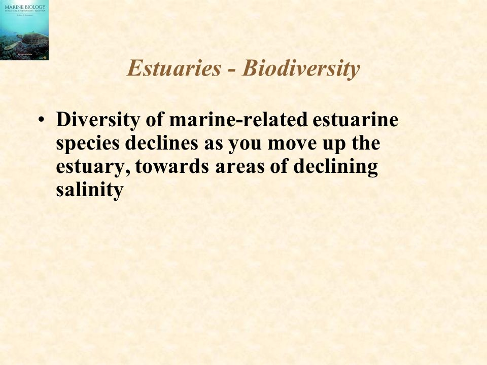 Estuaries - Biodiversity