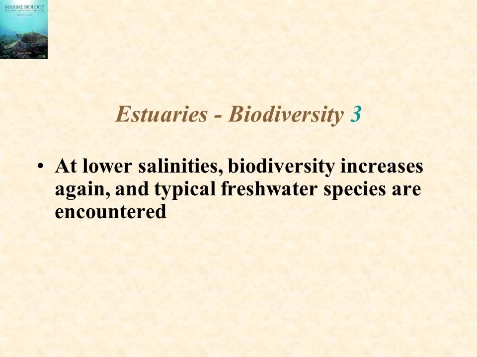 Estuaries - Biodiversity 3