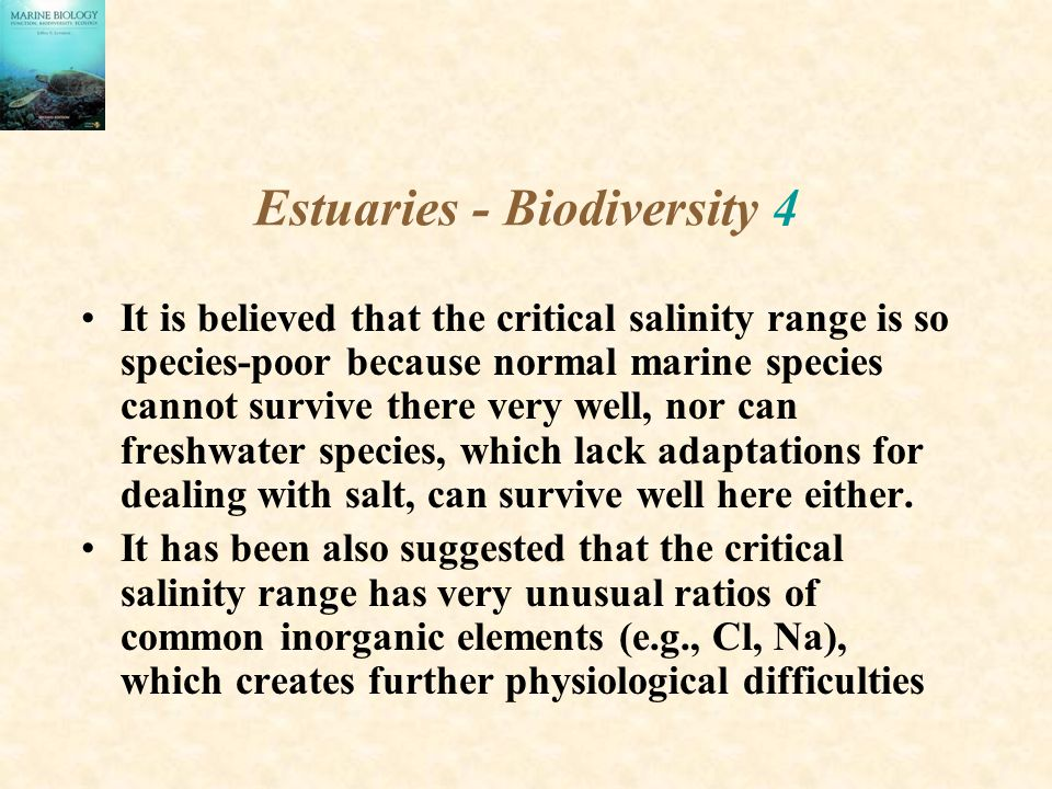 Estuaries - Biodiversity 4