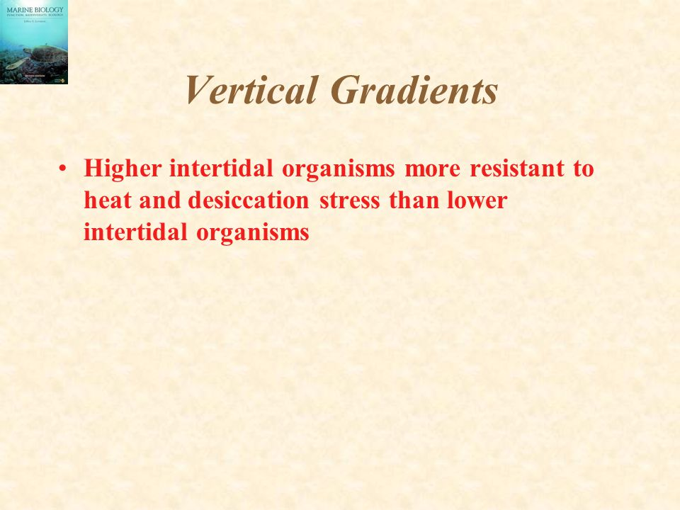 Vertical Gradients Higher intertidal organisms more resistant to heat and desiccation stress than lower intertidal organisms.