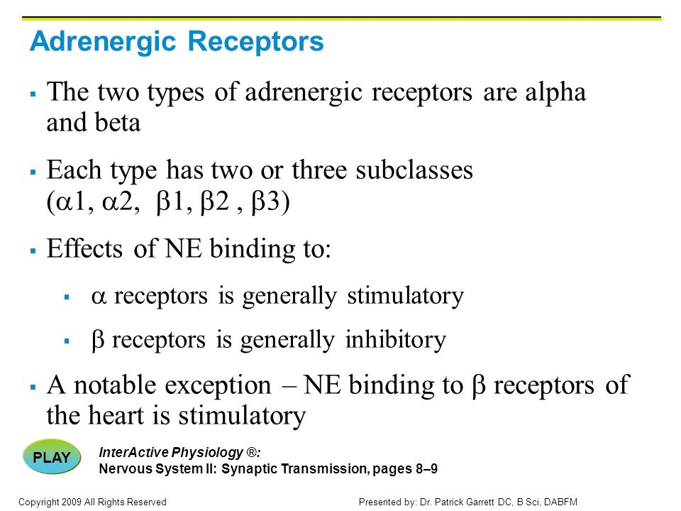 The two types of adrenergic receptors are alpha and beta