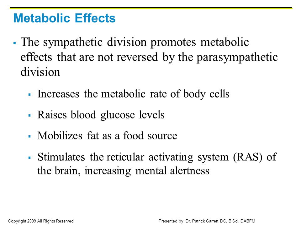 Metabolic Effects The sympathetic division promotes metabolic effects that are not reversed by the parasympathetic division.