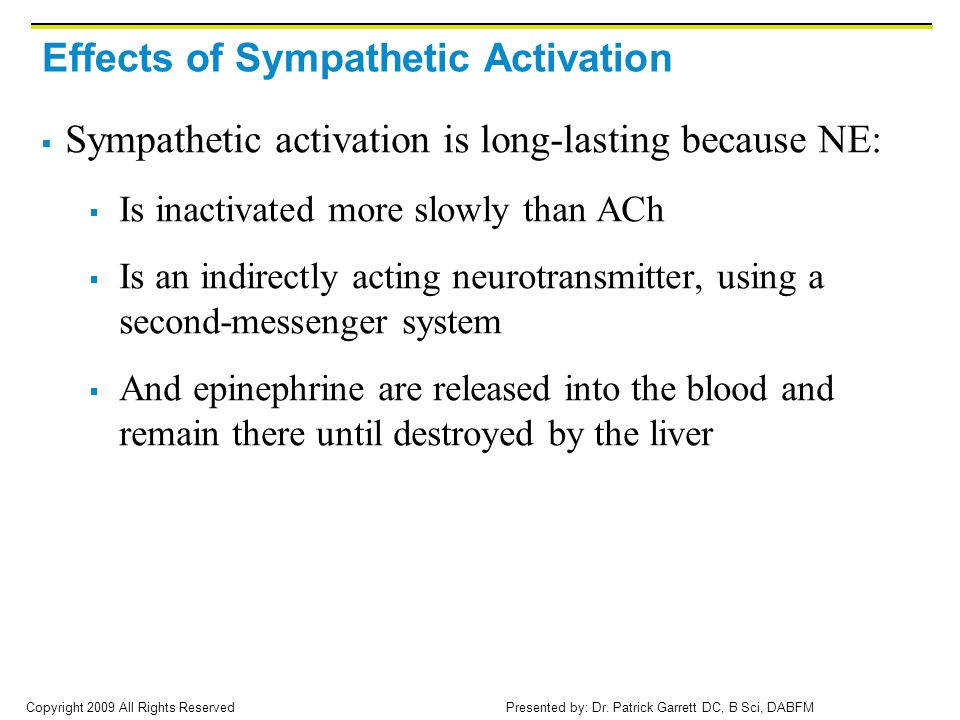Effects of Sympathetic Activation