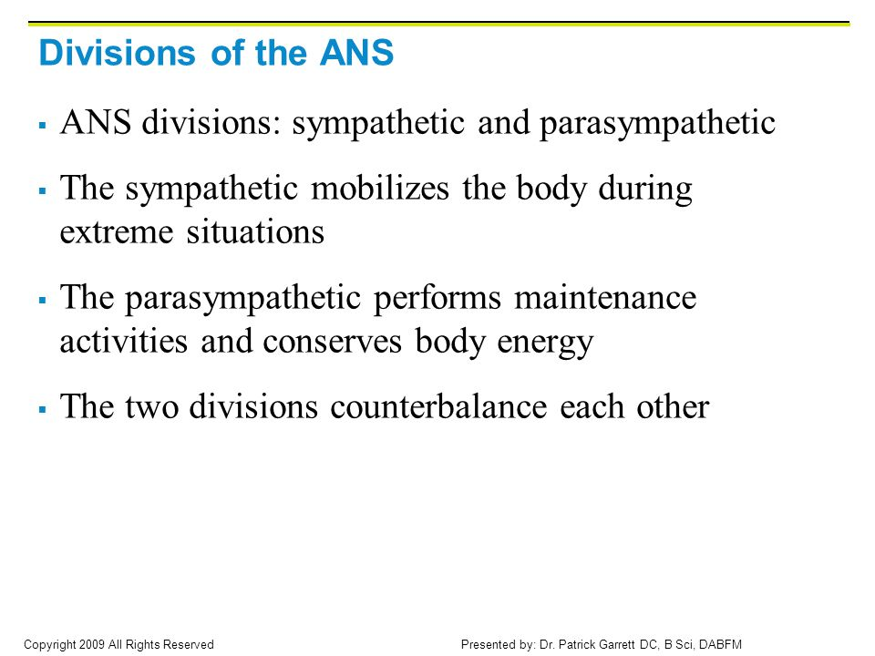 Divisions of the ANS ANS divisions: sympathetic and parasympathetic. The sympathetic mobilizes the body during extreme situations.