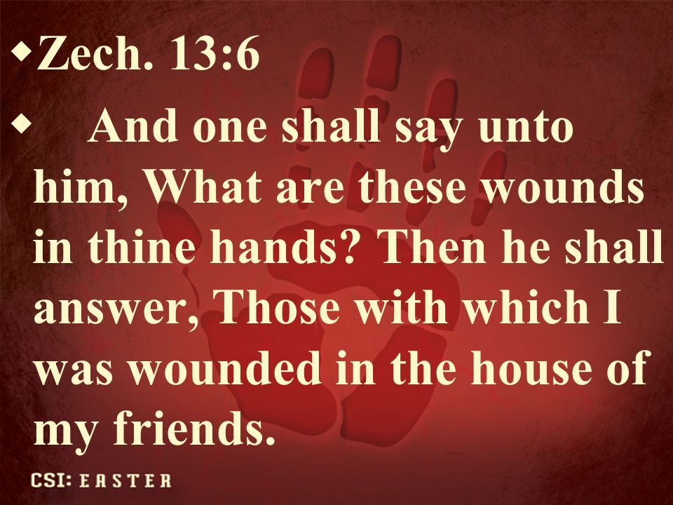 Zech. 13:6