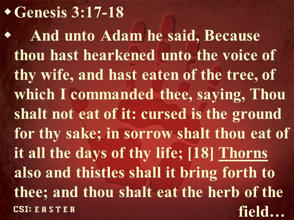 Genesis 3:17-18