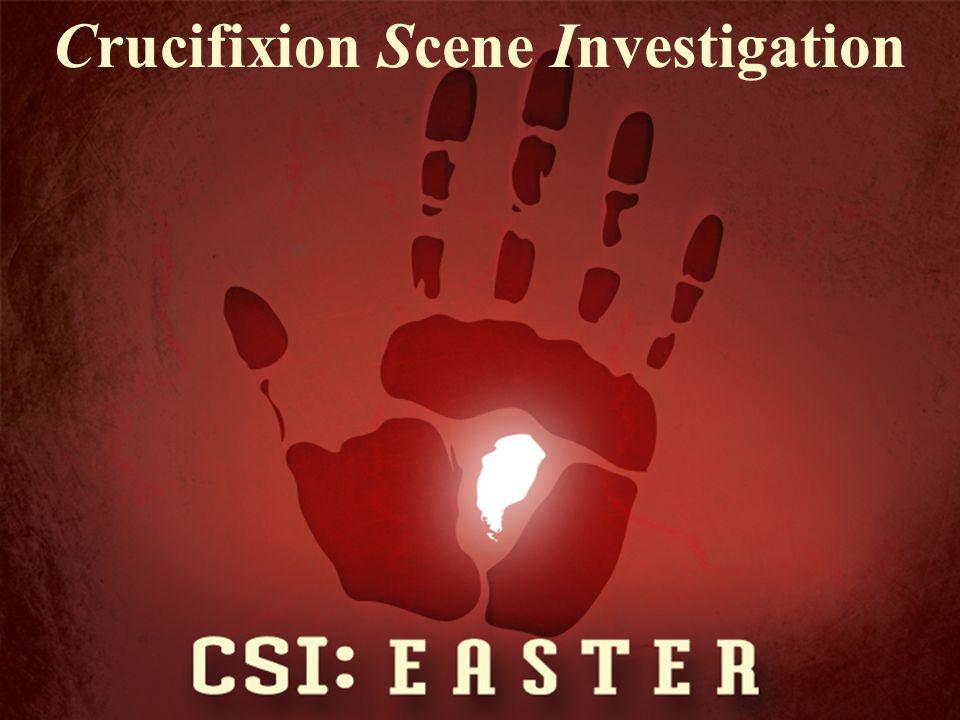 Crucifixion Scene Investigation