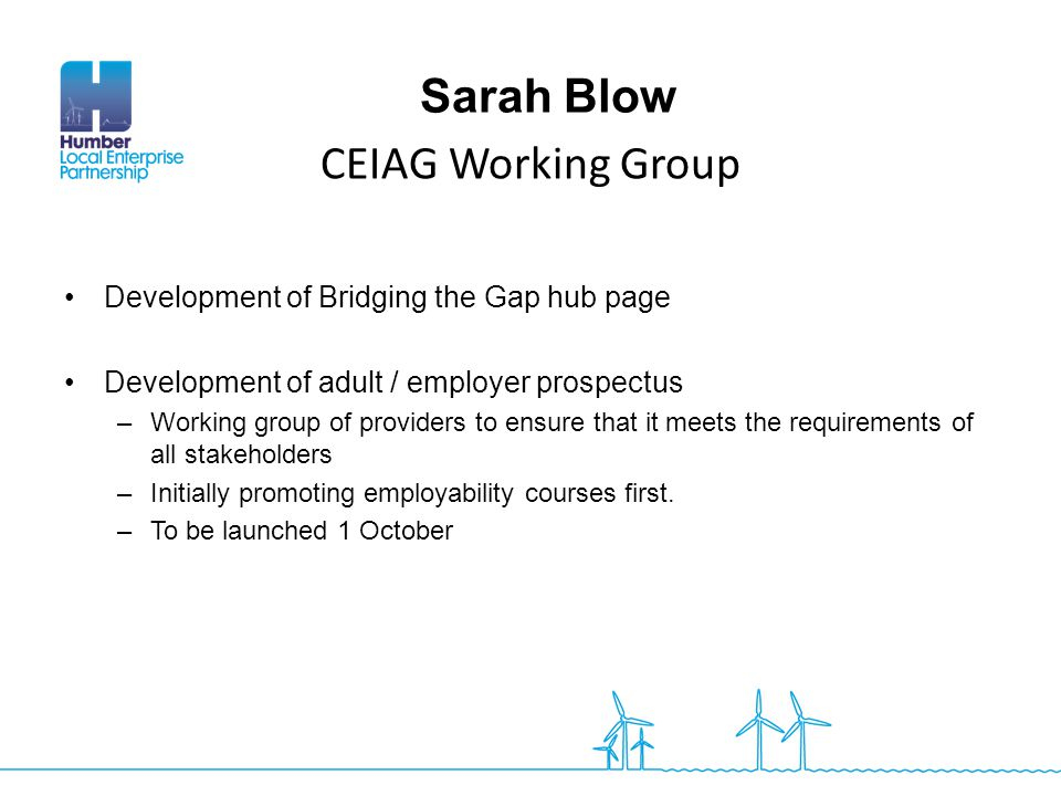 Sarah Blow CEIAG Working Group