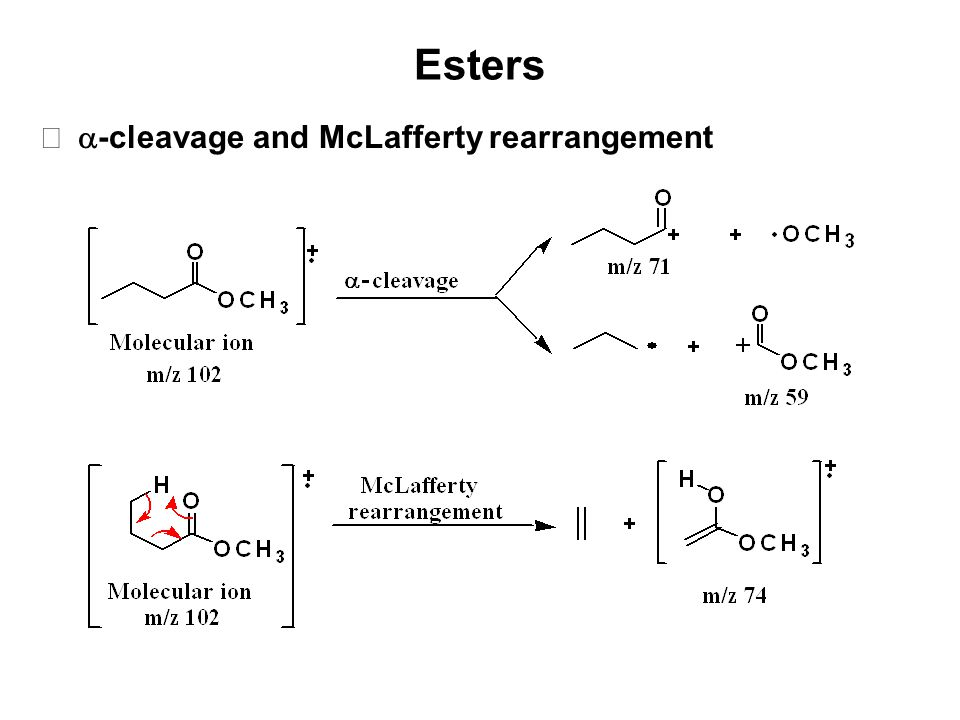 Esters -cleavage and McLafferty rearrangement