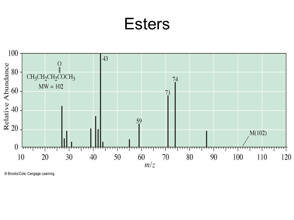 Esters Mass spectrum of methyl butanoate.