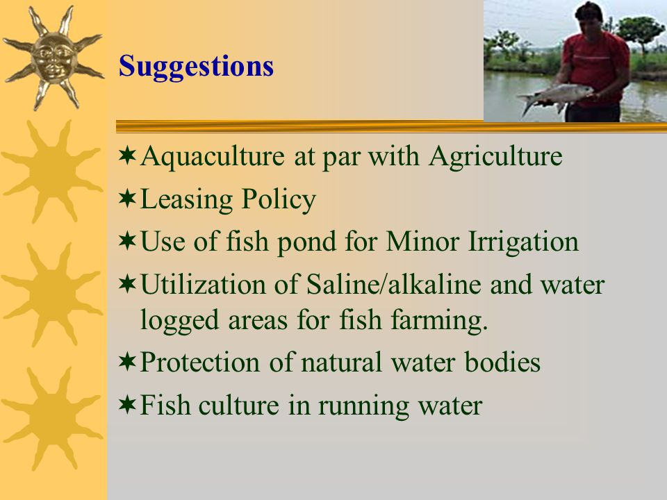 Suggestions Aquaculture at par with Agriculture Leasing Policy