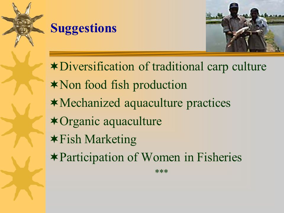 Suggestions Diversification of traditional carp culture