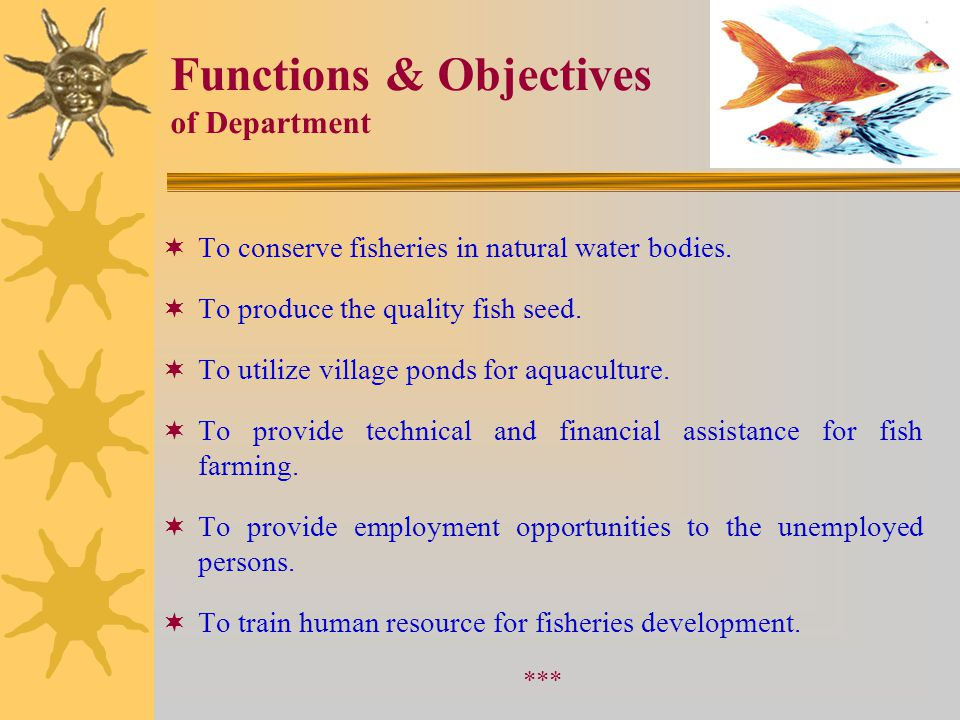 Functions & Objectives of Department