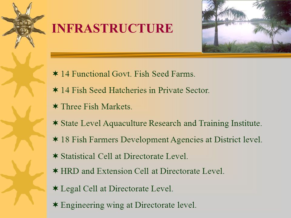 INFRASTRUCTURE 14 Functional Govt. Fish Seed Farms.