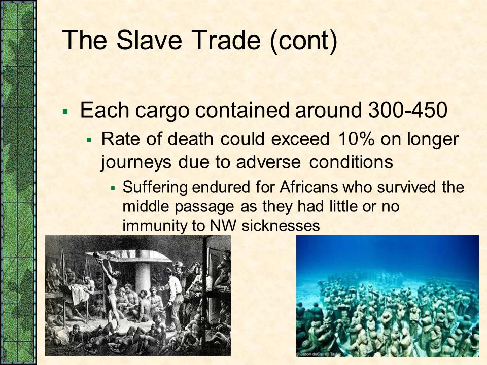 The Slave Trade (cont) Each cargo contained around 300-450