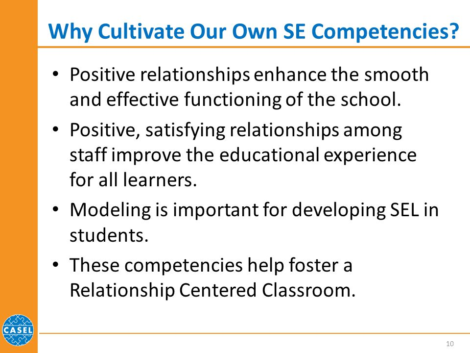 Why Cultivate Our Own SE Competencies