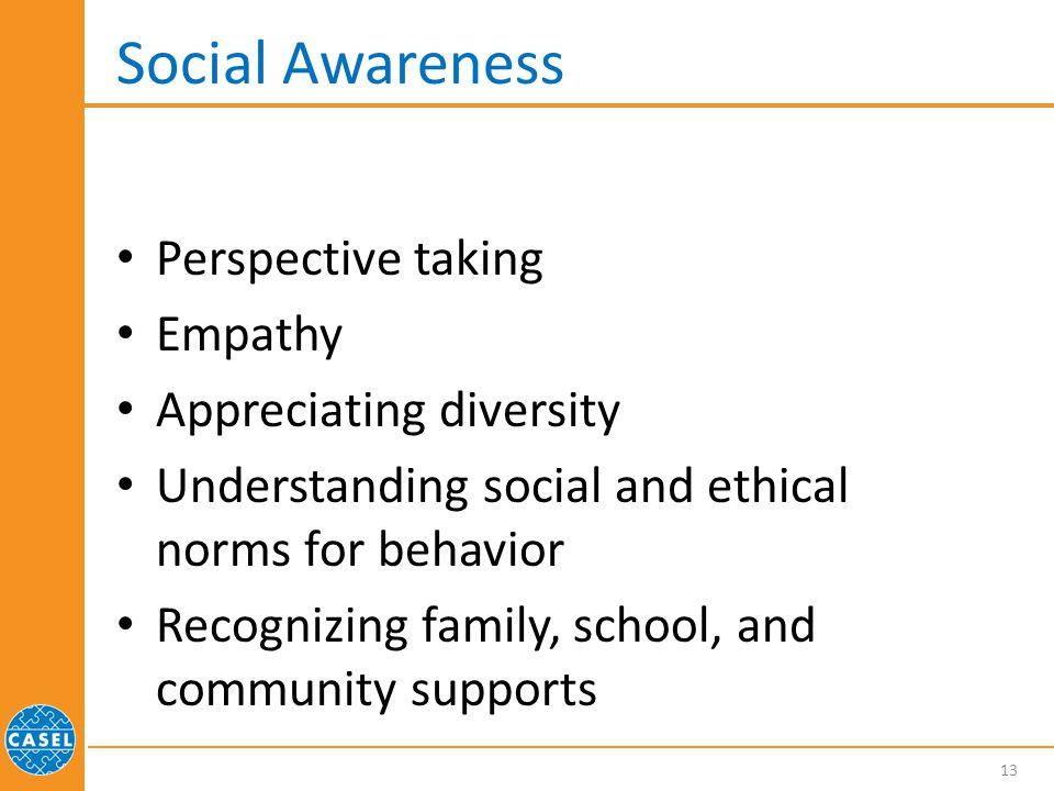 Social Awareness Perspective taking Empathy Appreciating diversity