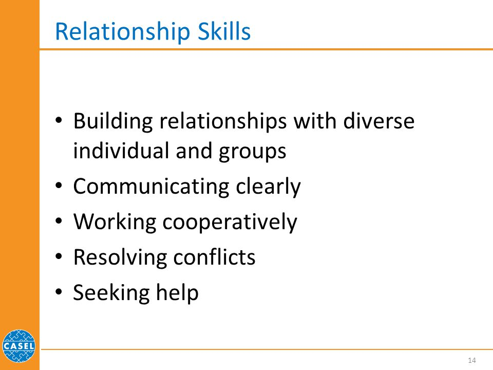 Relationship Skills Building relationships with diverse individual and groups. Communicating clearly.