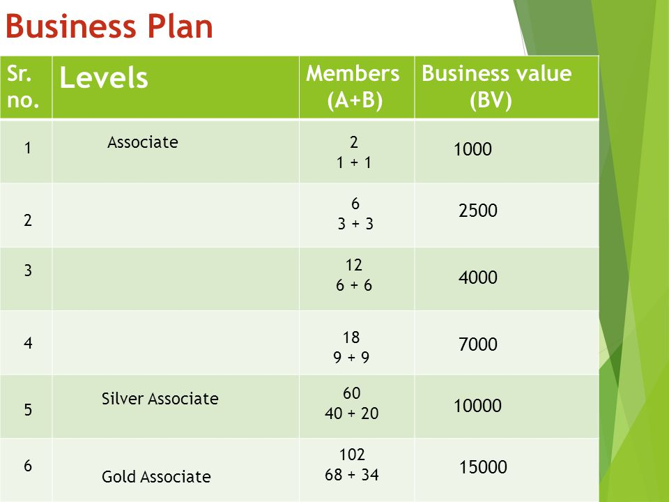 Business Plan Levels Sr. no. Members (A+B) Business value (BV) 1000