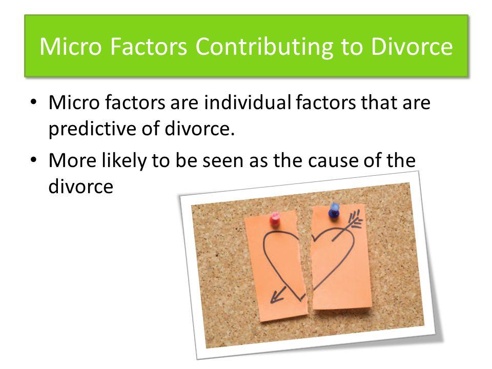 Micro Factors Contributing to Divorce