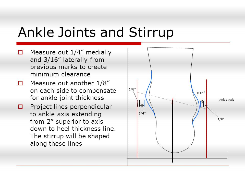 Ankle Joints and Stirrup