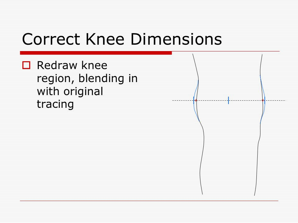 Correct Knee Dimensions