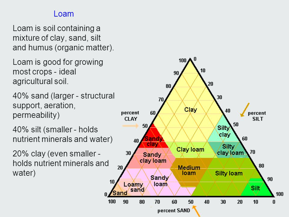 Loam Loam is soil containing a mixture of clay, sand, silt and humus (organic matter).