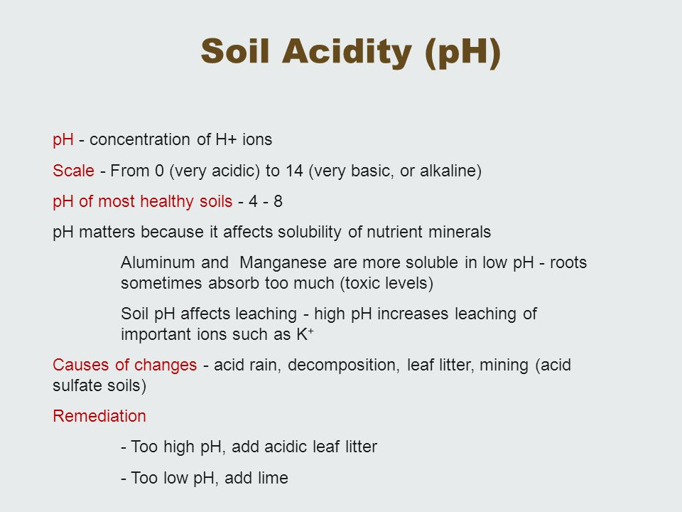 Soil Acidity (pH) pH - concentration of H+ ions