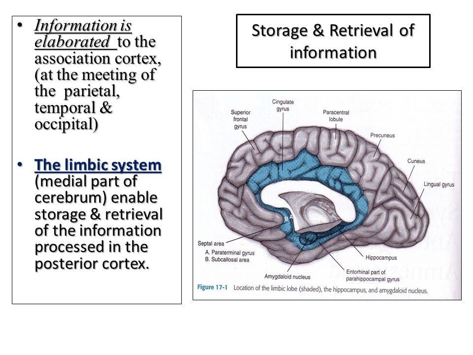 Storage & Retrieval of information