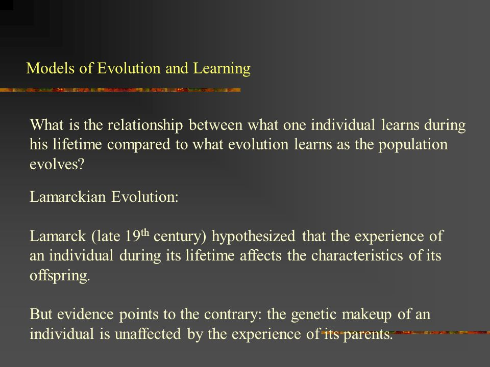 Models of Evolution and Learning