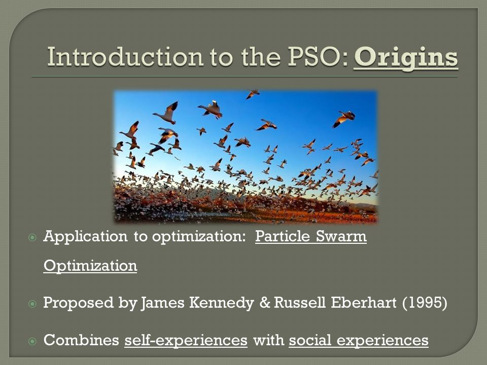 Introduction to the PSO: Origins