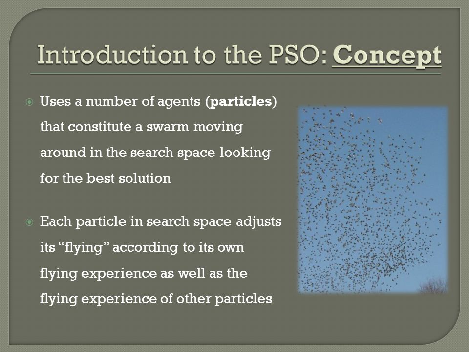 Introduction to the PSO: Concept