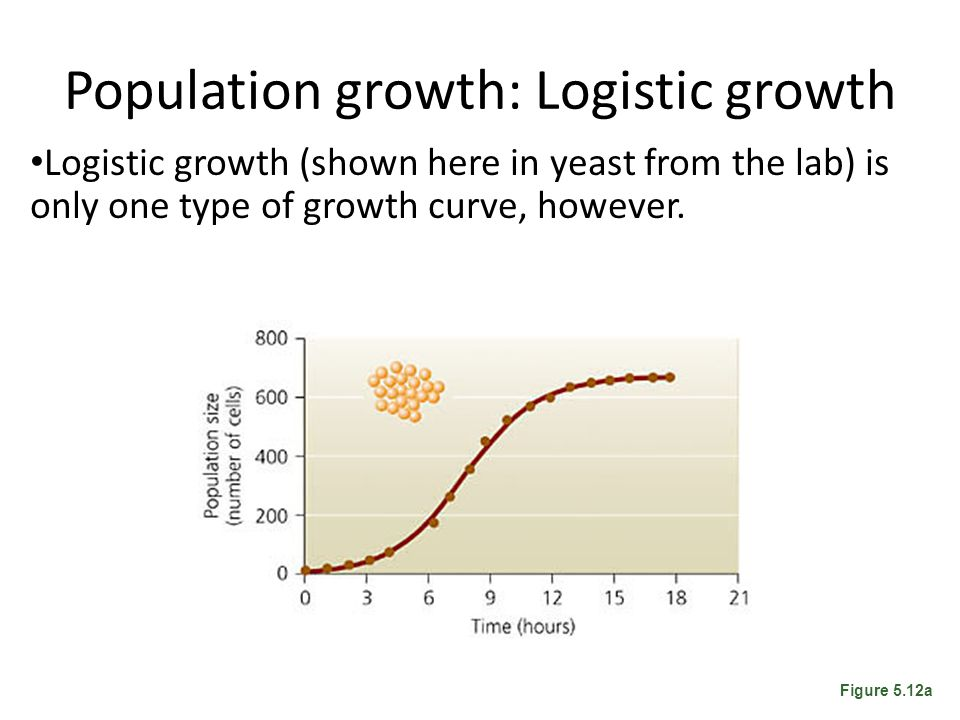Population growth: Logistic growth