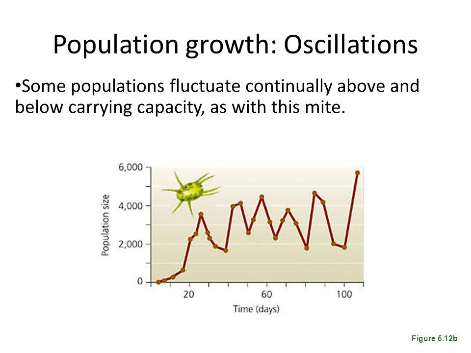 Population growth: Oscillations