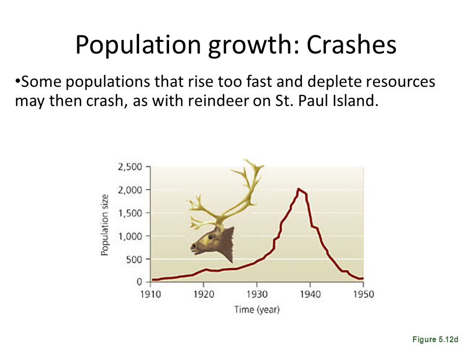 Population growth: Crashes