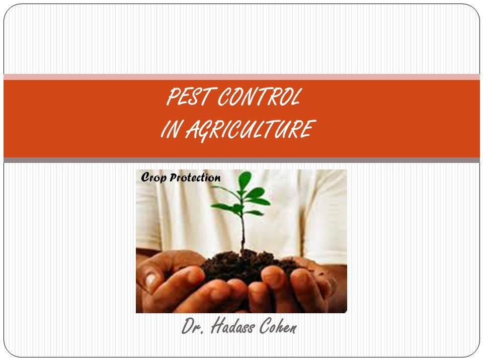 crop protection and pest control For this reason, the principles of integrated crop management are applied,  aiming to prevent insect introduction into the greenhouse and disease infestation  on.