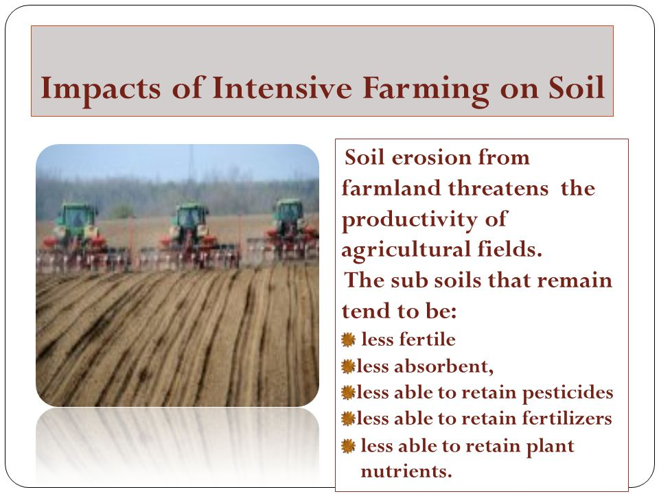 Impacts of Intensive Farming on Soil