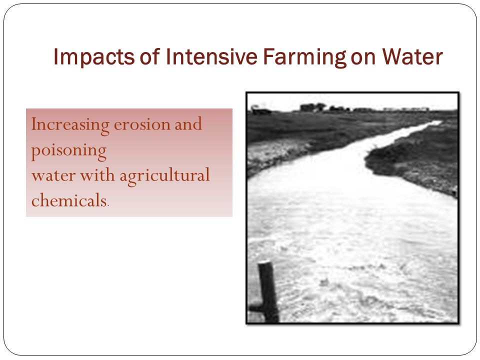 Impacts of Intensive Farming on Water