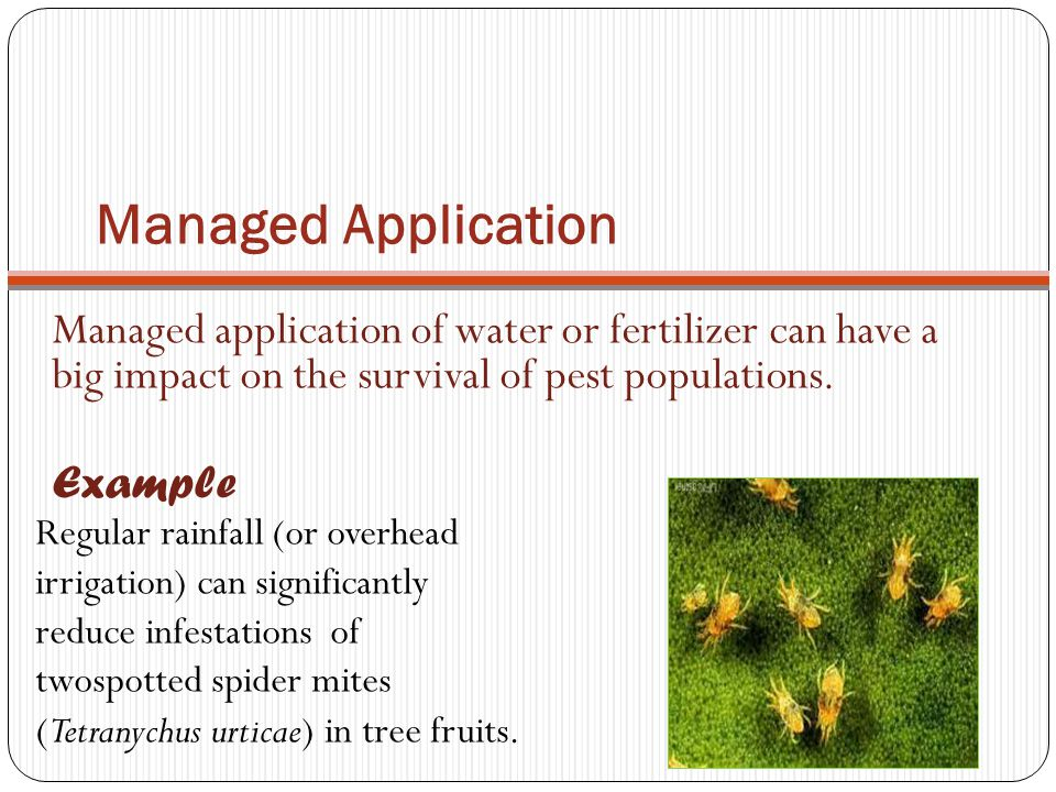 Managed Application Managed application of water or fertilizer can have a big impact on the survival of pest populations.